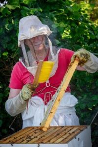 Patti sweeping bees